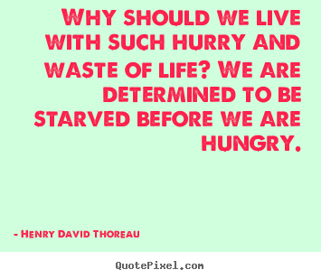 Life quote - Why should we live with such hurry and waste of life? we..