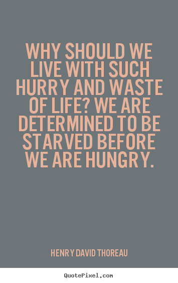 Make custom picture quotes about life - Why should we live with such hurry and waste of life? we are determined..