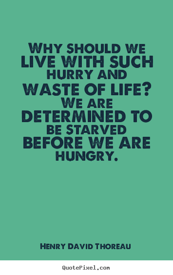 Why should we live with such hurry and waste.. Henry David Thoreau  life quotes