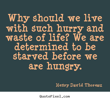Quotes about life - Why should we live with such hurry and waste of life?..