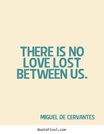 Quotes about love - There is no love lost between us.